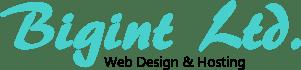 Bigint Logo